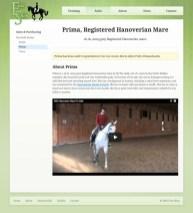 Portfolio item: Erin Shea Dressage - Sold horse page.