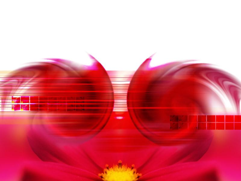 Windows XP Desktop Wallpaper: ‡Œ‹Moon flower.