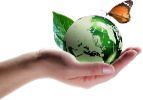 earth-in-hand-100-px