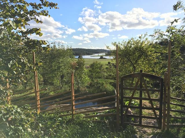 Ingången till Skogsträdgården Ravinen från toppen av dalen.