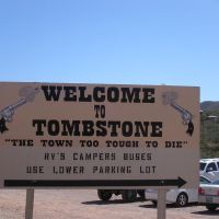 Tombstone, Arizona has the World's Largest Rose Bush