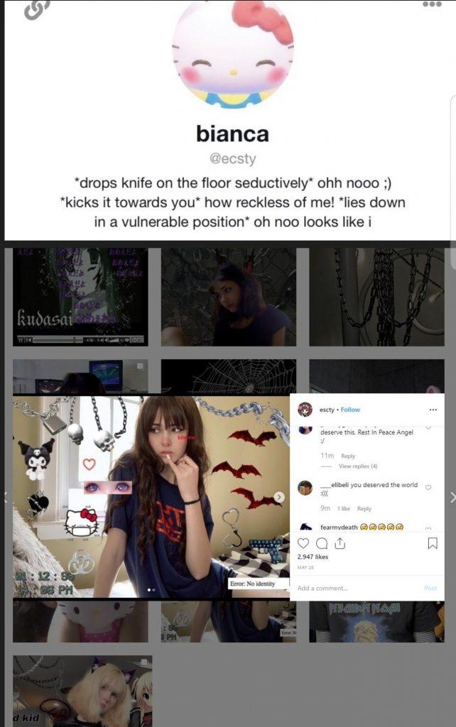 Man, 21, Nearly Decapitates Bianca Devins, 17, Popular Gamer