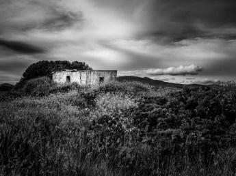 Abaodoned Irish Home