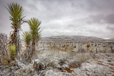West Texas Snowfall