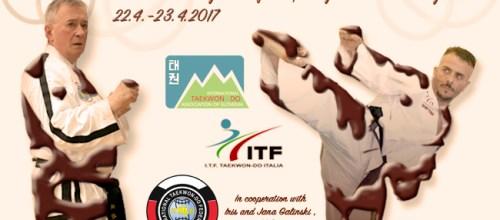Taekwon-Do Chocolate Weekend 2017 in Radovljica, Slovenia