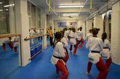 as pagratios afieroma poomsae team (13)