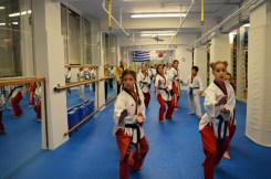 as pagratios afieroma poomsae team (15)