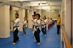 as pagratios afieroma poomsae team (23)