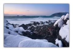 Shrine Winter Twilight