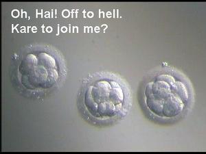 Lolembryos