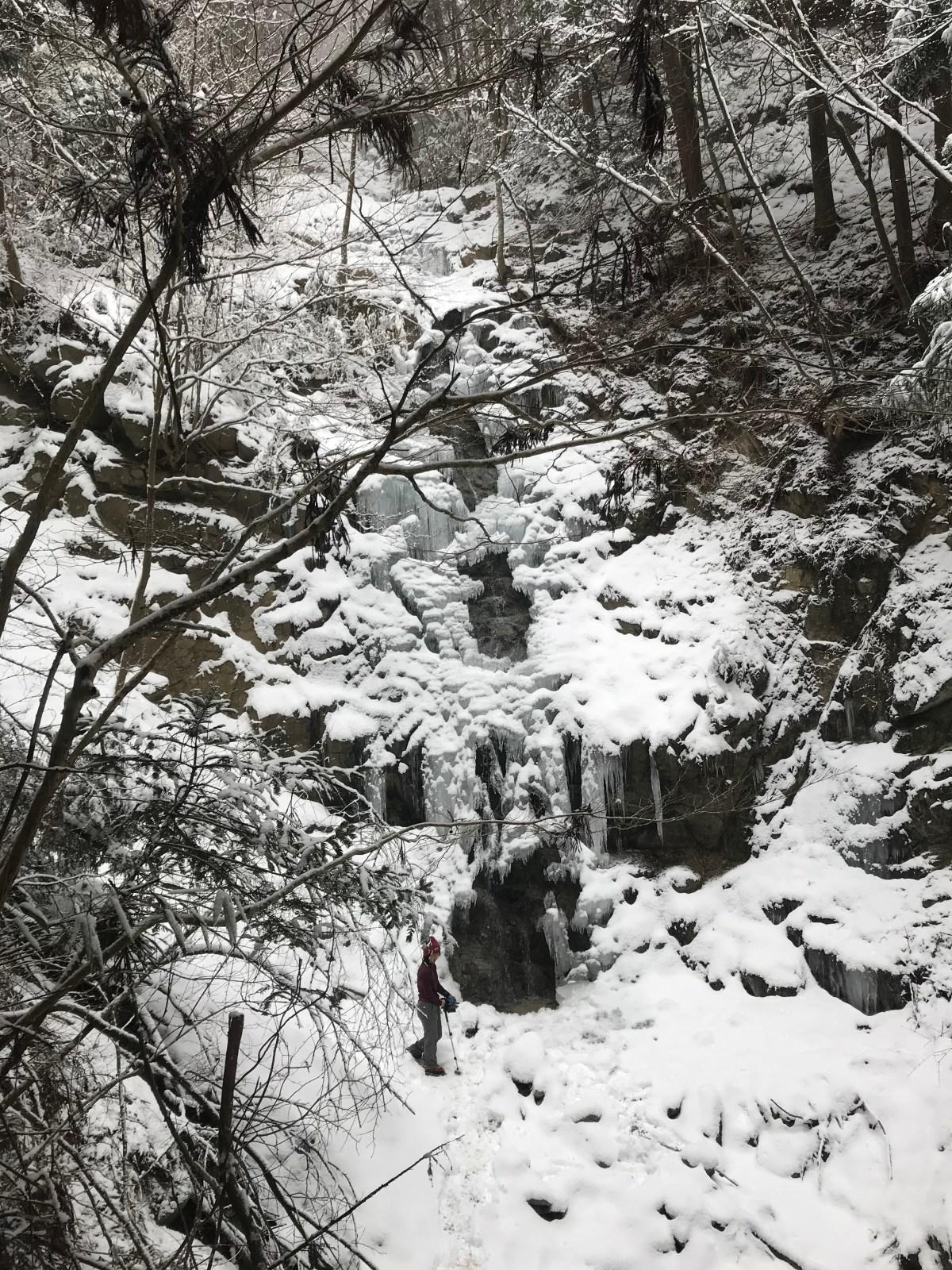 ツツジオ谷から金剛山
