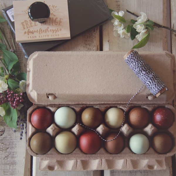 TLB Egg carton rubber stamps