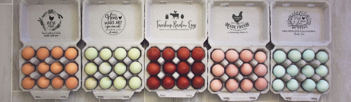 Egg Carton Rubber Stamps