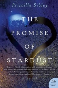 Promise of Stardust by Priscille Sibley (2013)