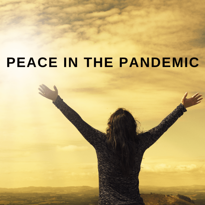 Peace in the Pandemic