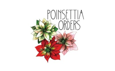 Poinsettia Orders – Mission Campus