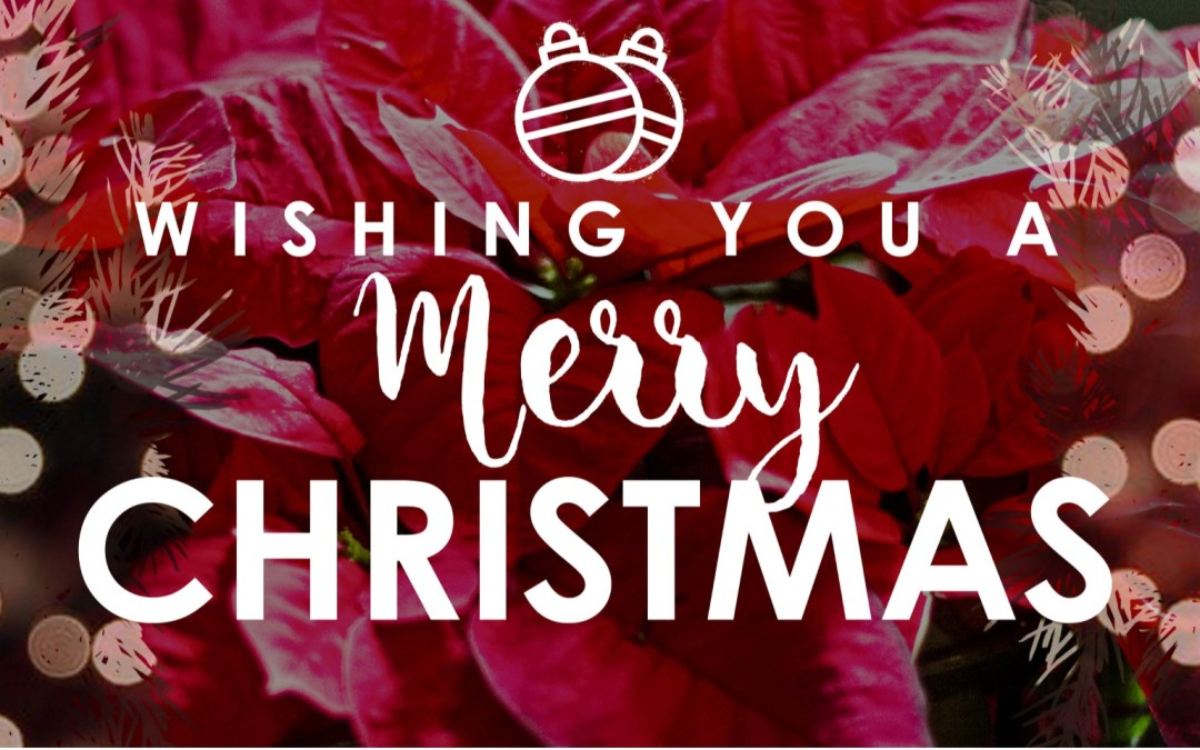 Merry Christmas from the Trinity Staff!