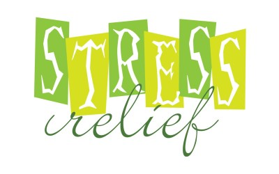 Stressed Out! Bible Study