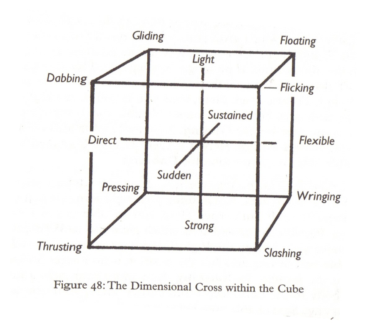 6 Kinesphere Space And Relationships