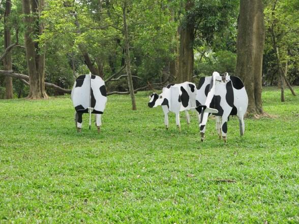 Fake cows