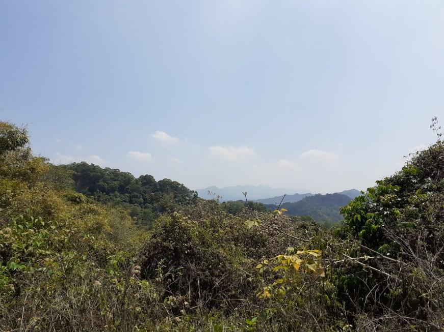 大坑步道風景