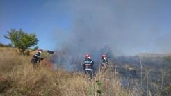Pompierii din cadrul ISU Tulcea - Macin au intervenit la un incendiu de vegetatie uscata