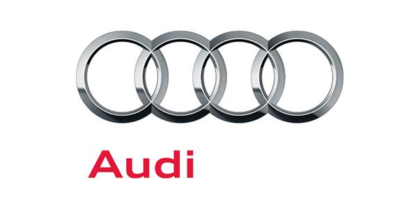 Demian DominguezRetail Performance Experience LeadAudi Of America - Audi of america
