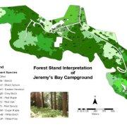 Spatial Database Modeling of forest stands in Kejimkujik National Park
