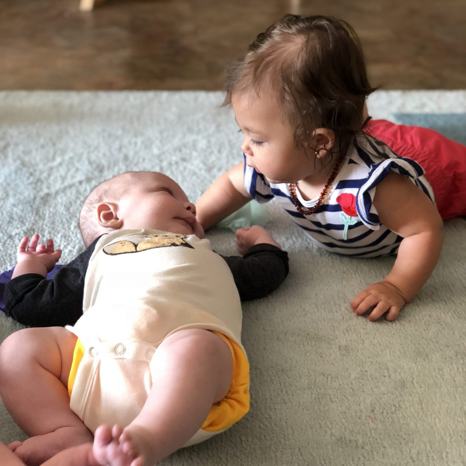 Infants Studying Each Other