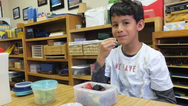 Independence packing lunch, Montessori Private School, Arlington TX