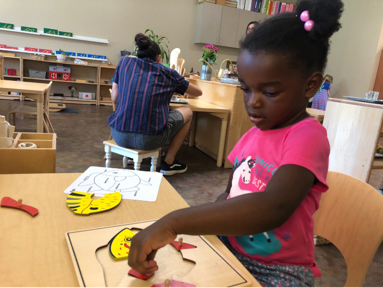 Early Childhood Knobbed Puzzles