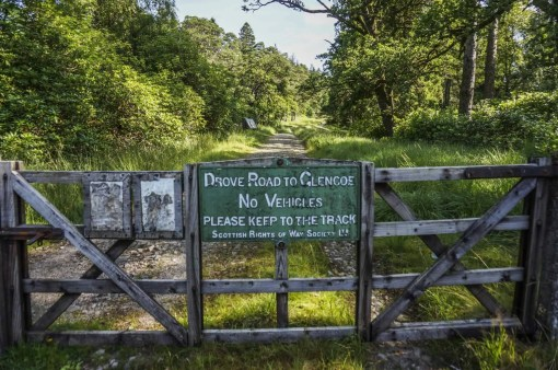 Much of the West Highland Way takes you along former drover's roads.