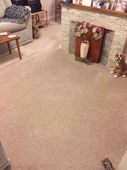 Res carpet clean2