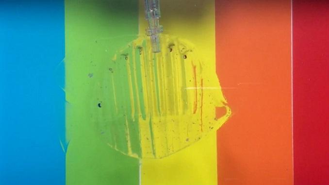 Робот з прозорого гідрогелю може дбайливо зловити і відпустити рибку