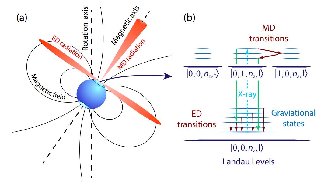 Астрофізики розробили теорію, яка пояснює радіовипромінювання пульсарів
