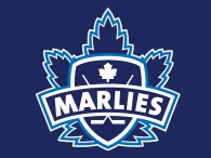 Game #2: Toronto Marlies 3 vs. Bridgeport Sound Tigers 0