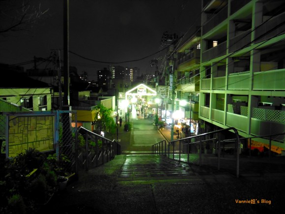 tokyo-yanesen-yanakaginza-yuuyakedandan-night