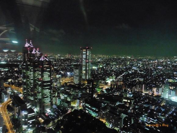 Tokyo night view at Tokyo Metropolitan Government Office_skycrapers_2