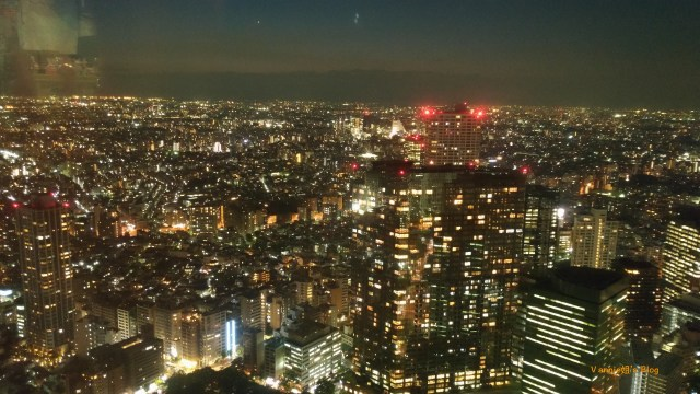 Tokyo night view at Tokyo Metropolitan Government Office_skycrapers_1