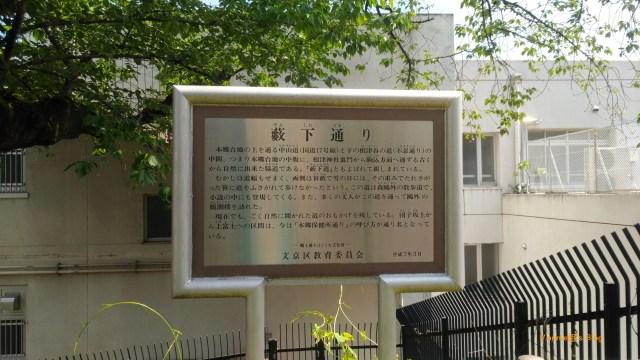 Tokyo Yanesen Yabushitadori-20180419