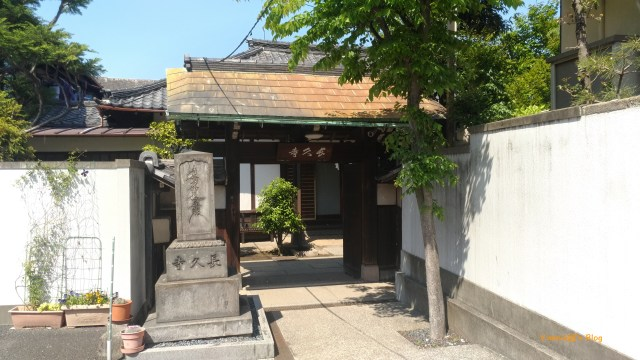谷根千 密度很高的寺院