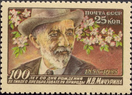 100th anniversary of the great transformer of nature I. V. Michurin's birthday (1956)