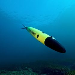 Strengthening National Security and Protecting Marine Life – How Underwater Security Systems and Services Are Straddling Two Needs