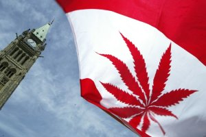 Canada Legalizes Recreational Use of Cannabis