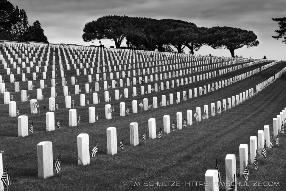 Rows of Remembrance by T.M. Schultze