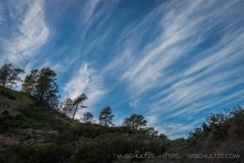 Torrey Pines Hills