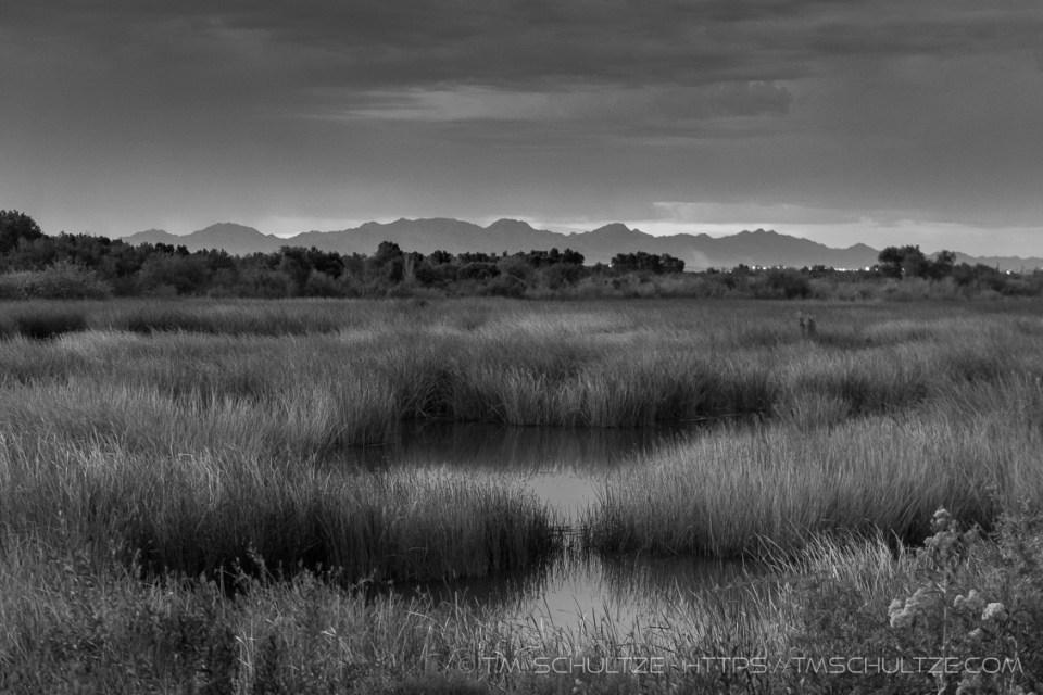 Gila Mountains, East Wetlands, Monochrome