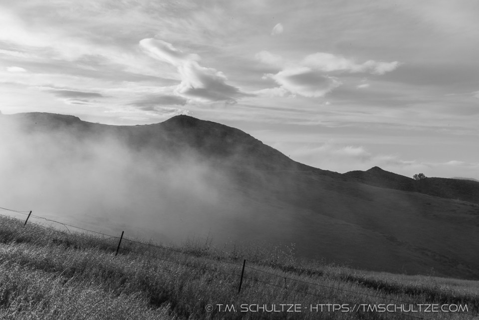 Figueroa Mountain Fog Mist, Black and White, by T.M. Schultze