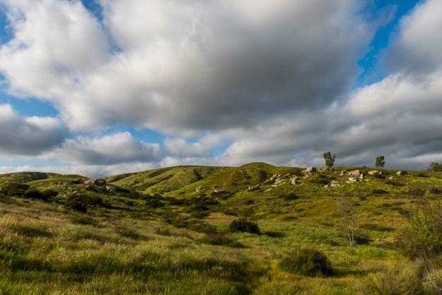 Santee Rocks Spring by T.M. Schultze