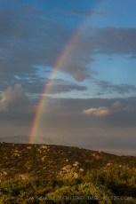 Rainbow Above Lagunas